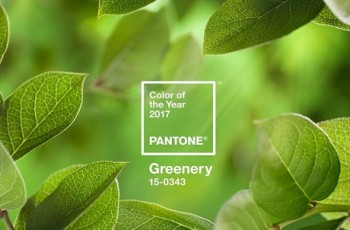 2017 Pantone Colour of the Year